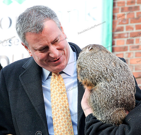 Mayor Bill de Blasio and new friend CHUCK