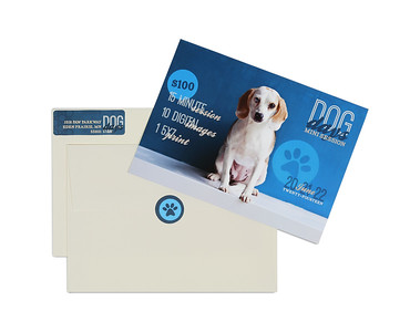 Custom Address Labels & Envelope Seals