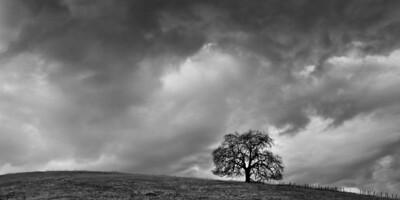 Stormy Mood