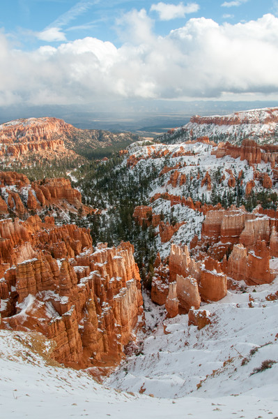 Red Sandstone and fresh snow, Bryce Canyon NP, Utah  November 2011