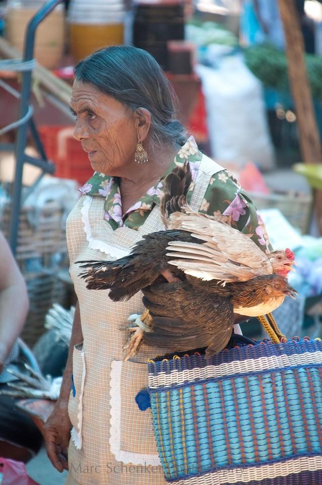 No hay gallos para el Palenque, Zaachila, Oaxaca 2006