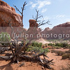 Arches National Park, Utah - Not For Sale