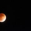 Lunar Eclipse II April 2014