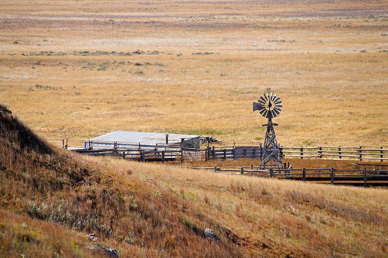Big Basin Corral