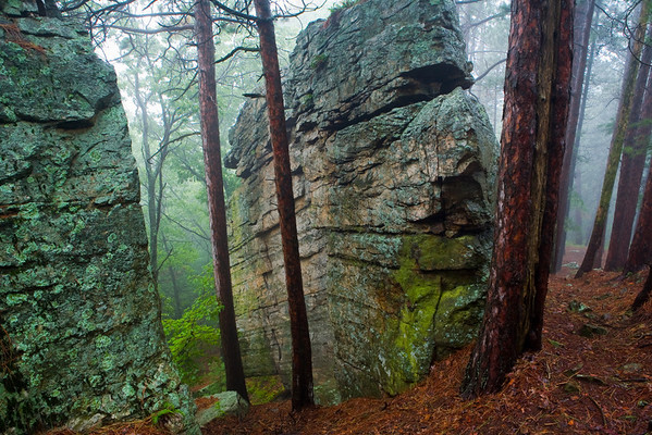 Castle Mound, Black River State Forest, Wisconsin