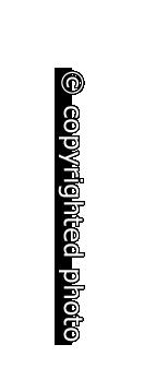 Copyr-vert-RO