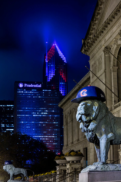2016 World Series Lions