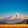 Mt. Hood Autumn View