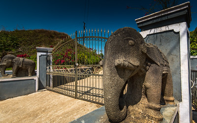 Guarding elephants