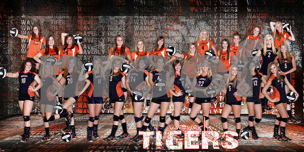 Volleyball Team Banner2012 10x20