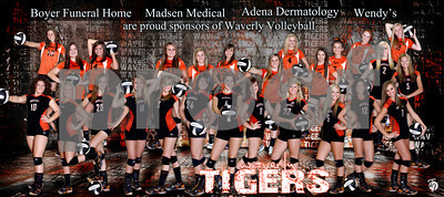 Volleyball Team Banner2012 small