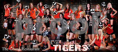 Volleyball Team Banner reduced size