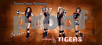 Volleyball Team Banner2012 seniorssmall