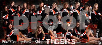 cheer team banner reduced size