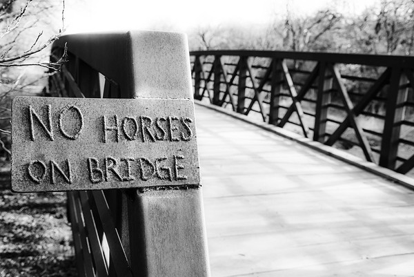 Horseless Bridge