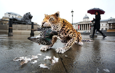 Nat Geo WILD release animatronic leopard in Trafalgar Square, London, UK, 8th March 2017