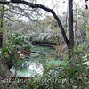 Blue Spring State Park - Orange City, FL