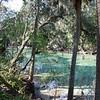 Blue Spring State Park - Orange City, FL