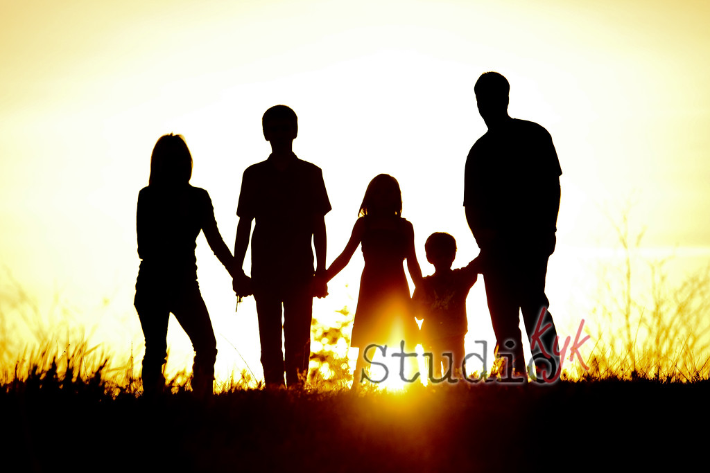 Q: can we get a silhouette family photo?  A: i will do everything i can to get one.... but at some locations its not possible, so if you REALLy want one let me know and we will go to a location where it can happen.