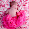pink<br /> tutu<br /> LOVE LOVE LOVE!!!!