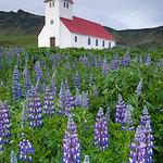 Vik i Myrdal Church, Vik, Iceland