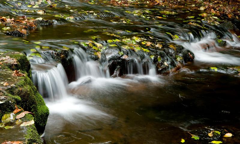 OR, Sweet Creek Falls
