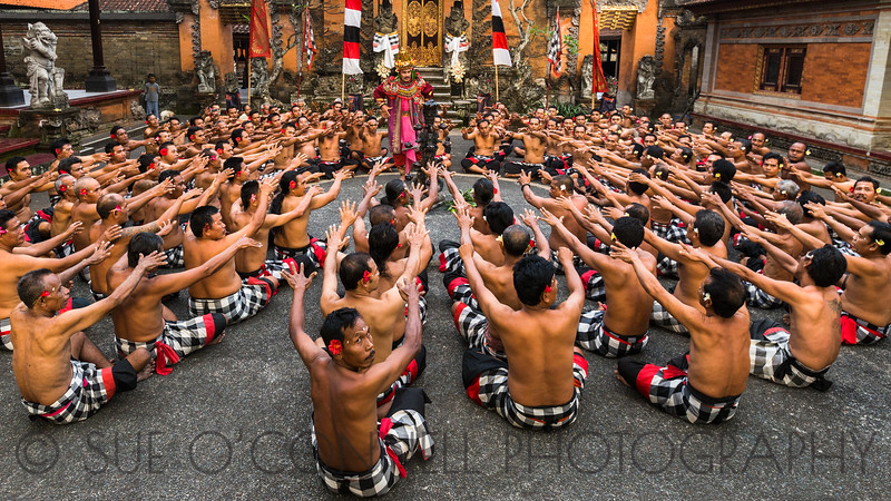 The Monkey Dance, Bali