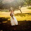 Wedding Highlights-3986
