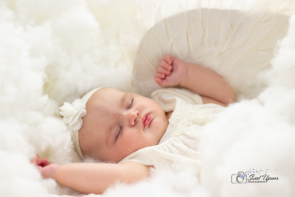 Guelph Newborn Photography