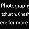 Dog Photography Course UK