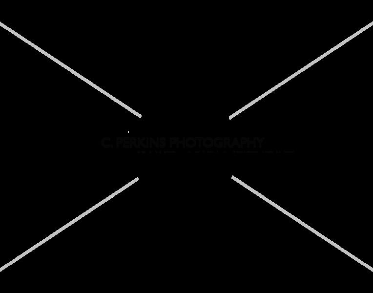 CPP Watermark