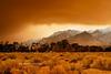 Fire in the Sierras
