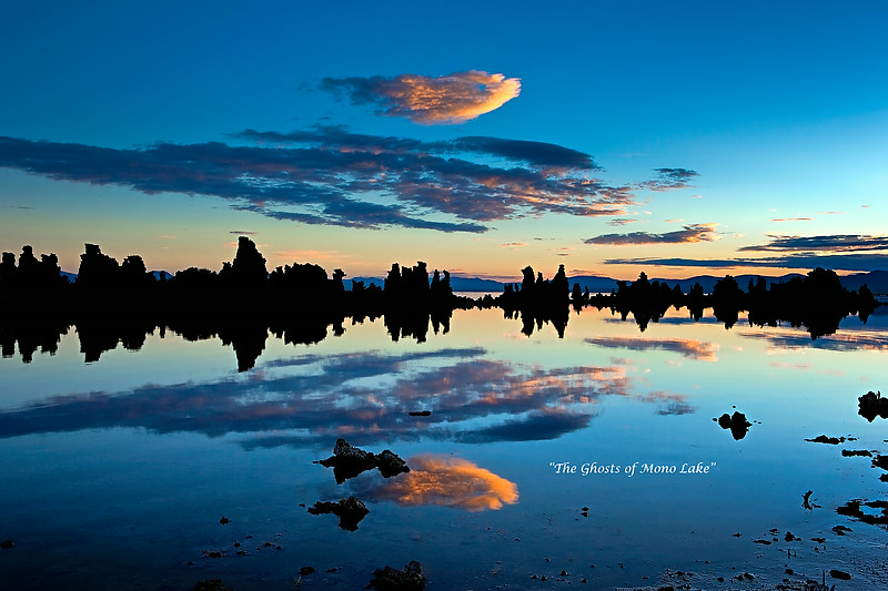 """The Ghosts of Mono Lake"""