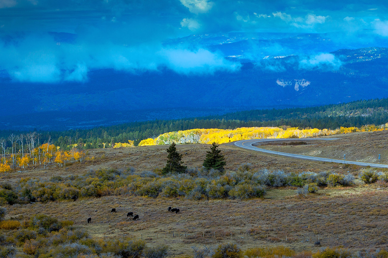 Clearing Storm over Aspen Grove