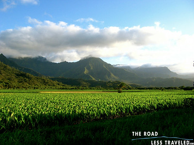 Watermarked Hawaii: Ahola 'Aina Web Photos