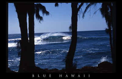 NORTH SHORE, OAHU. USA