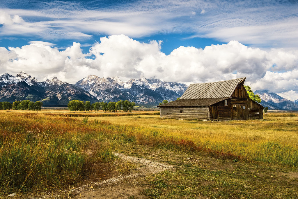 Mormon Row - Grand Tetons