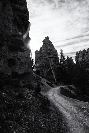 Bryce Path - Black and White