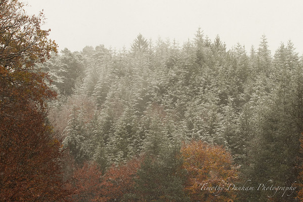 Fall Colors & First Snow-44