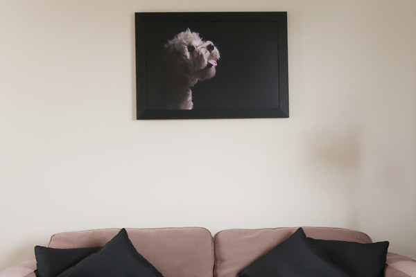 edinburgh dog photography wall product