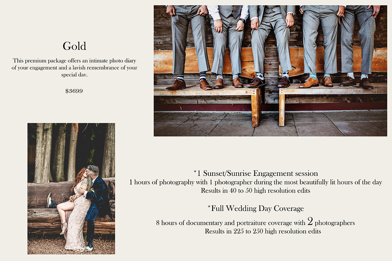 Wedding Package - G O L D
