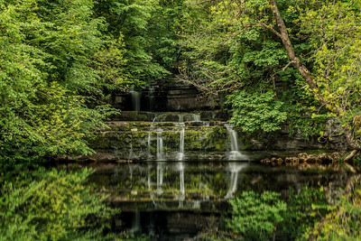 Cotter Force after Water Reflection action