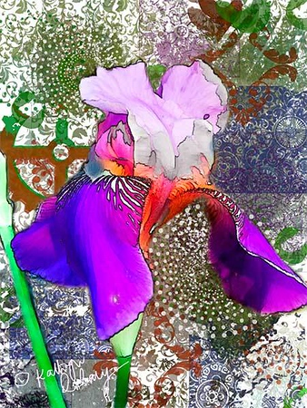 Digital Collage with iColorama