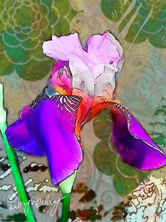 Iris collage start