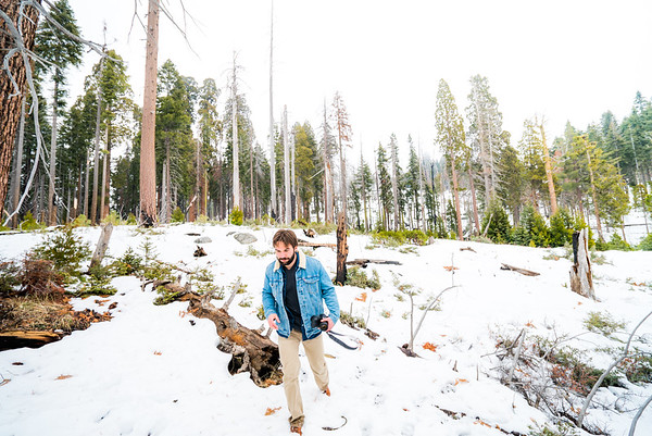 Photo Mission, Sequoia National Park