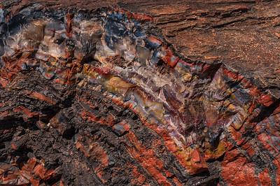 Fossil Arc