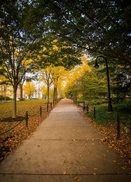 Autumn Walk, Penn State
