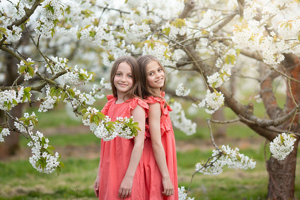 2019 - Twins in Cherry Blossom 033