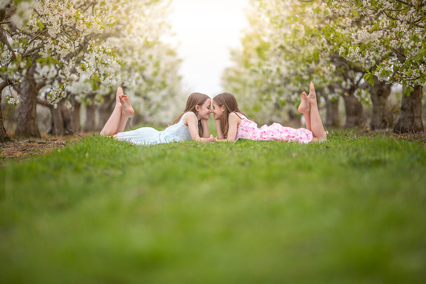 2019 - Twins in Cherry Blossom 023