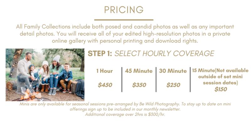 Gold Wedding Planner Business/Advertising Website